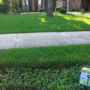 Bio Green USA: Bio Green Lawn and Landscape™  Brand